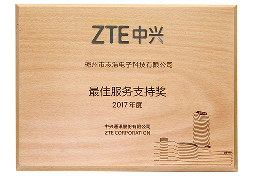 2017 ZTE best service support award A